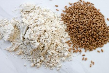 Spelt-Grain-and-Flour.jpg